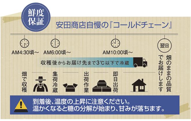 安田商店自慢の「コールドチェーン」