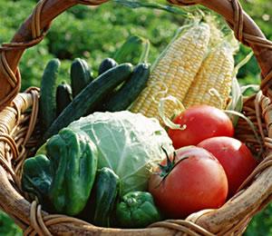 野菜流通事業